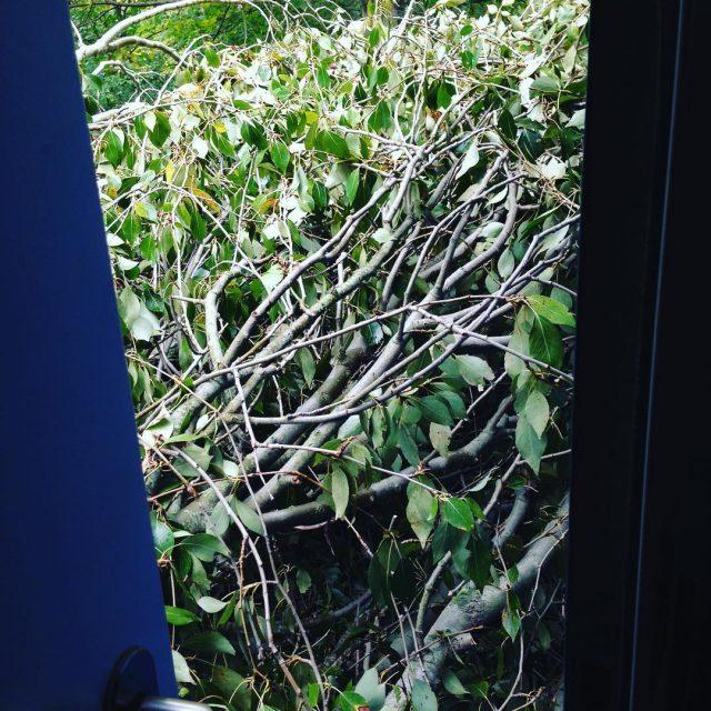 Upps die Tr zur Terrasse geht nicht mehr auf dahellip
